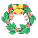 Bouwpakket Kerstkrans- kleur