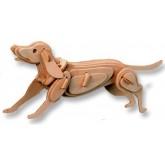 Bouwpakket Hond