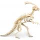 Bouwpakket  Parasaurolophus