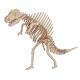 Bouwpakket Spinosaurus- kleur
